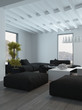 Black and White Furniture Inside a Lounge Room