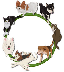 犬と猫の輪