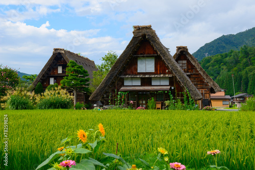Leinwandbild Motiv Historic Village of Shirakawa-go in summer