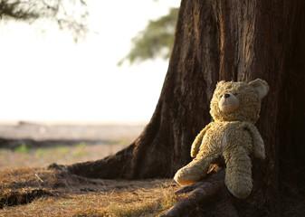 teddy bear sitting against a tree
