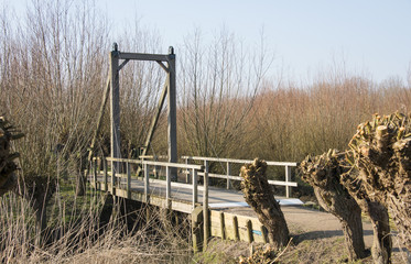 wooden drawbridge in nature with willows