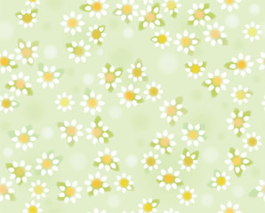 Vector chamomiles seamless pattern , soft, blurred effect.