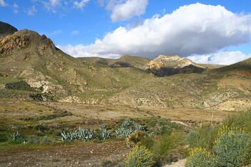 dans le parc naturel de Cabo de Gata