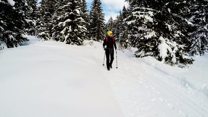 Nordic walking in the snow - a woman on the winter hike