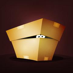 Surprise Inside Birthday Cardboard Box