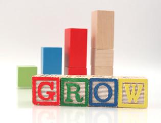 Wooden Blocks Spelling Word Grow