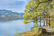 canvas print picture - park at lake Kochelsee