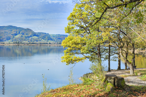 canvas print picture park at lake Kochelsee