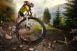 Sport. Mountain Bike cyclist riding single track - 78274219