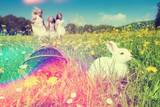 Fototapety Osterhase an Ostern mit Ostereiern