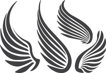 Set of 4 wings.
