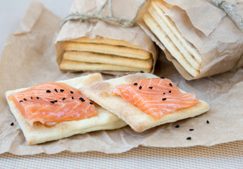Cracker with a salmon