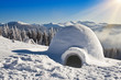 igloo on the snow - 78284269