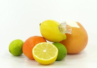 Arrangement mit Zitrusfrüchten