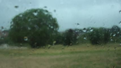 Autumn rain shower