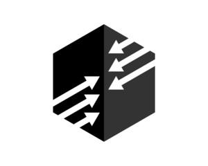 hexagonal logo v.8