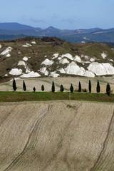 Toscana,Crete Senesi