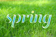 Beautiful spring grass background. Hello Spring concept