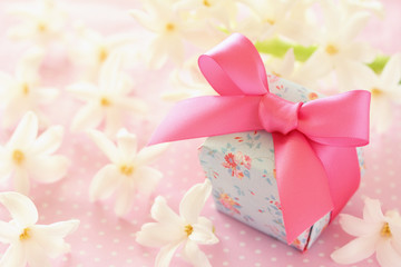 プレゼントとヒヤシンス