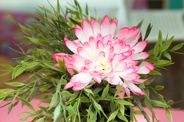 artificial pink chrysanthemum