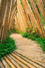 Fototapeta bambusowy most