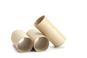 Paper tube of toilet paper