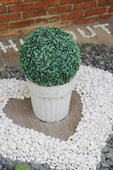 Fake plants in white pot