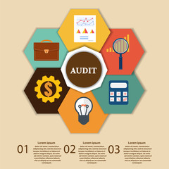 Financial Examiner Infographic. Vector illustration.