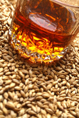 Malt and whiskey