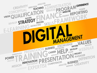 Digital Management word cloud, business concept