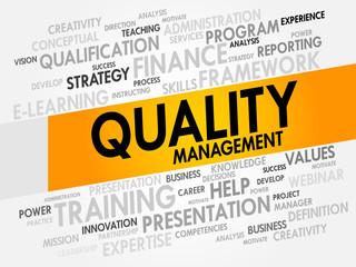 Quality Management word cloud, business concept