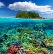 Leinwanddruck Bild - Beautiful underwater garden on the background of the island.