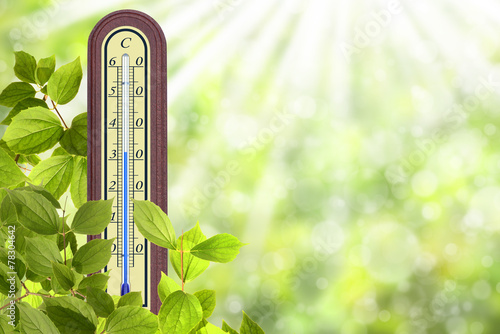 Thermometer 38