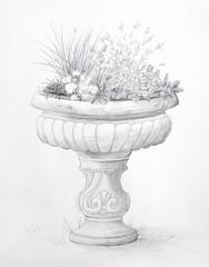 Herb Garden Bird Bath Pencil Drawing