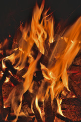 Aflame wood 21