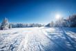 Paysage de neige - 78305255
