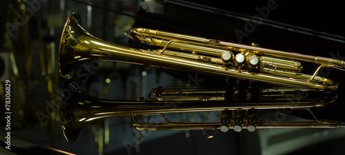 beautiful golden trumpet
