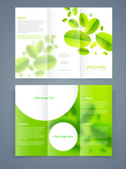 Tri-fold brochure, template or flyer design for ecology concept.