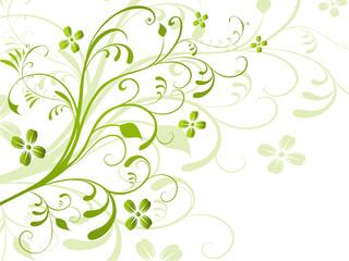 Floral,flora,grün,frühling,pflanze,blume,blumen,blatt,blüte,deko