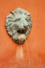 lion statue spitting water at the park
