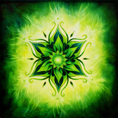 Flower Mandala on a green background