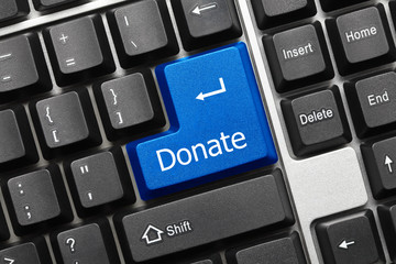 Conceptual keyboard - Donate (blue key)