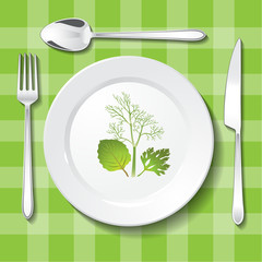 Parsley, oregano and dill on white plate