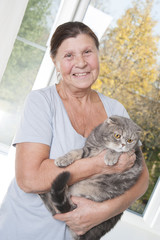 An elderly woman is holding a cat breed Scottish Fold..