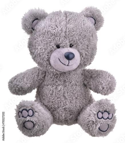 obraz PCV Grey furry teddy bear