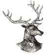 Monsieur Deer