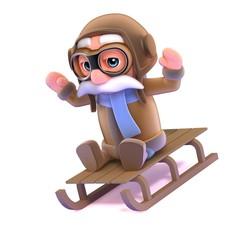 3d Pilot rides his sled