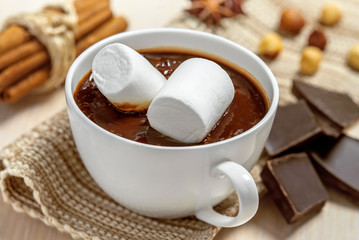 Hot chocolate with marshmallows in cup with cinnamon