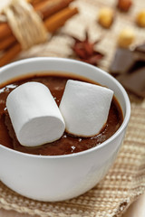 Hot chocolate with marshmallow in mug, close up
