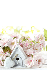 birdhouse and spring flowers